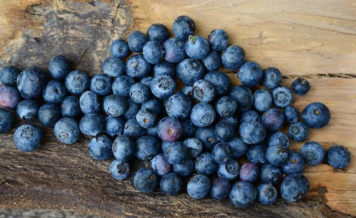 Athena Blueberry