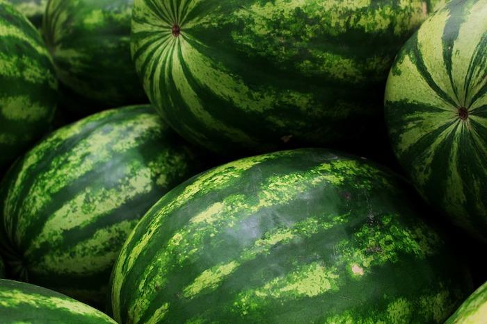 Athena Watermelon