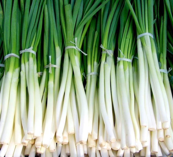Athena Farms Green Onion