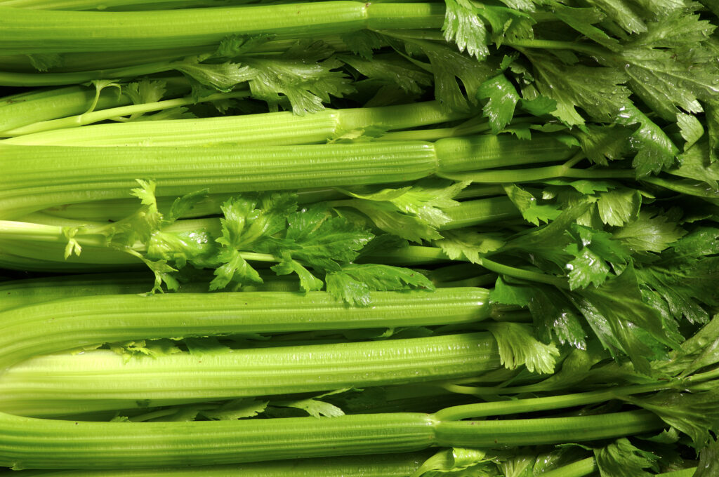 Athenafarms Celery