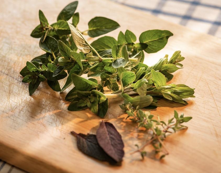 Locally Grown Herbs Athena Farms